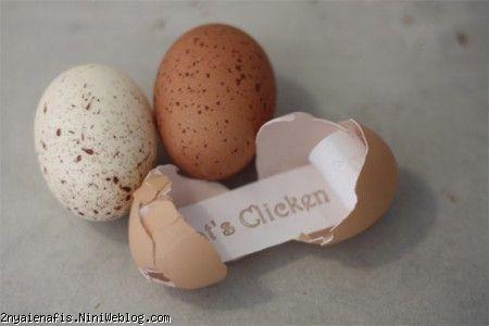 پیامی درون تخم مرغ!