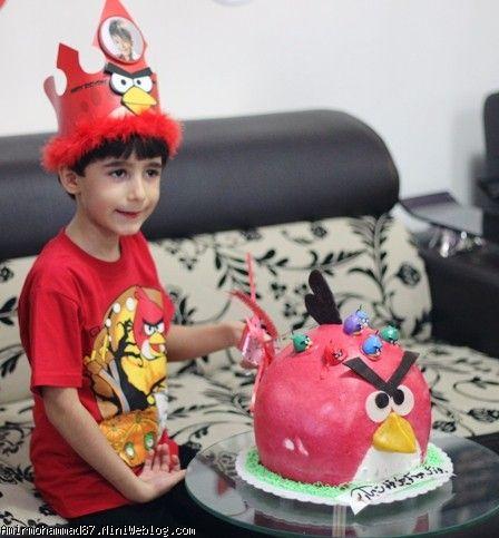 جشن تولد 6 سالگی امیرمحمد با تم انگری بردز