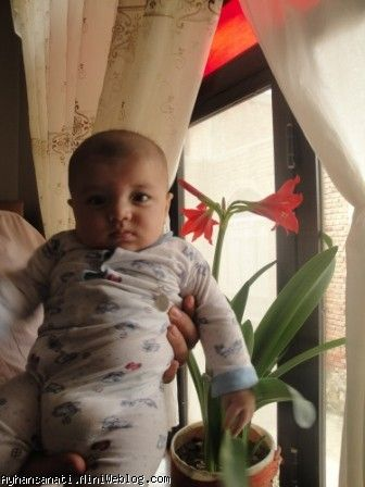 زیبا مامانو  117 امین روز تولد