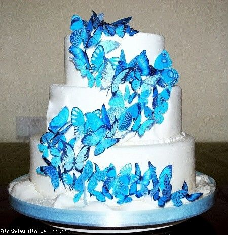 جدیدترین مدل های کیک پروانه ای