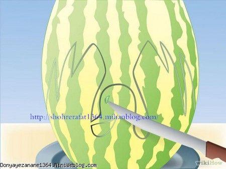 هندوانه به شکل قو