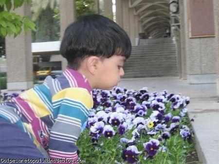 مهبد در حال بوئيدن گلهاي بهاري