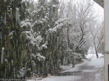 برف زيباي 27 بهمن ماه