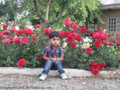 زيباترين گل بهاري ِ من