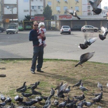 ویانا و کبوترها DOVE AND VIANA
