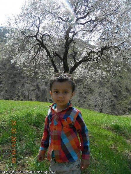 طبیعت روستای نگل