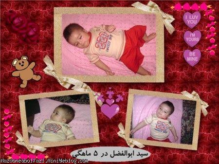 سید ابوالفضل شیبت الحمدی
