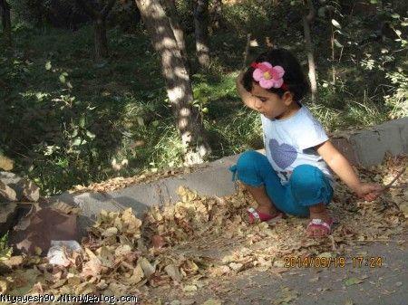 بازی با برگ های زرد و خشک شده پاییزی