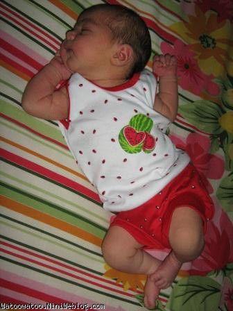 خانم هندوانه